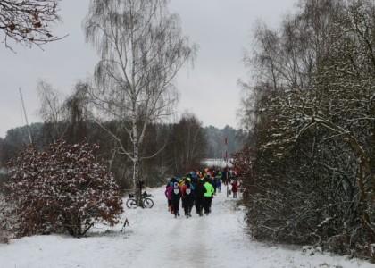 Winterlauf Challenge: Auftakt für Winterlauf-WM im Oberpfälzer Seenland